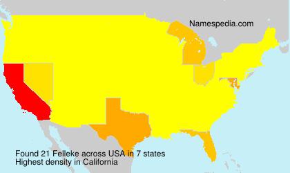 Surname Felleke in USA