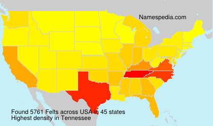 Surname Felts in USA
