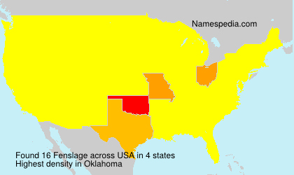 Surname Fenslage in USA