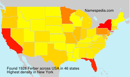 Surname Ferber in USA