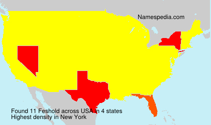 Familiennamen Feshold - USA