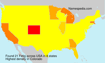 Surname Fetig in USA