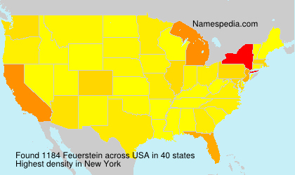 Surname Feuerstein in USA