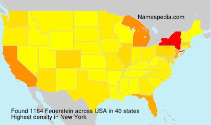 Familiennamen Feuerstein - USA