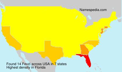 Fevzi - USA