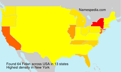 Surname Fidan in USA