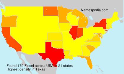 Fiesel - USA