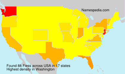 Surname Fiess in USA