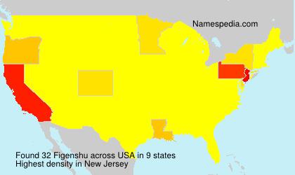 Familiennamen Figenshu - USA