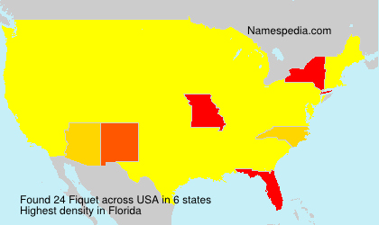 Surname Fiquet in USA