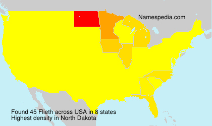 Surname Flieth in USA