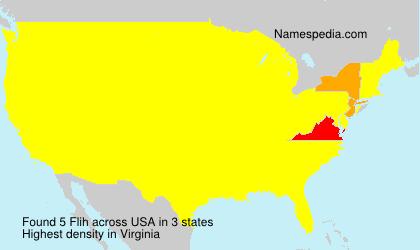 Flih - USA