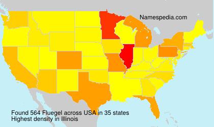 Surname Fluegel in USA