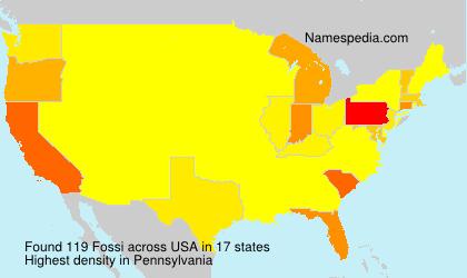 Familiennamen Fossi - USA