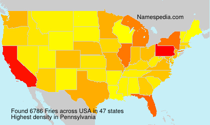 Surname Fries in USA
