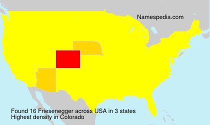 Familiennamen Friesenegger - USA