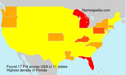 Surname Frit in USA