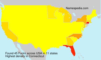 Familiennamen Fucini - USA
