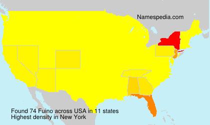 Fuino - USA