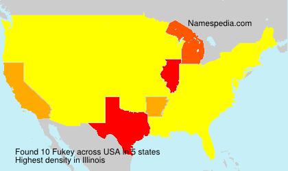Surname Fukey in USA