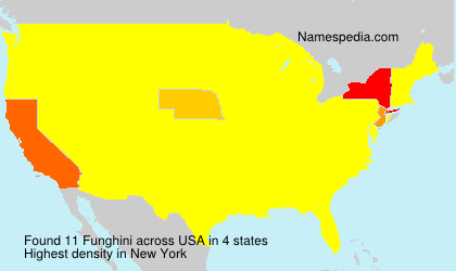 Surname Funghini in USA