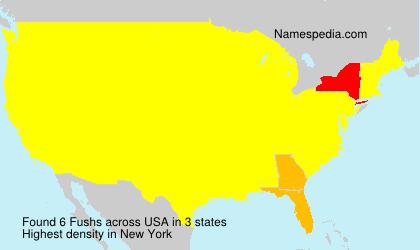 Surname Fushs in USA