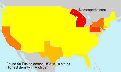 Surname Fusina in USA