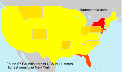 Surname Galinkin in USA