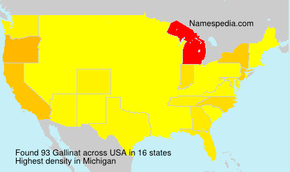 Surname Gallinat in USA