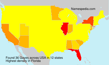 Surname Gayes in USA