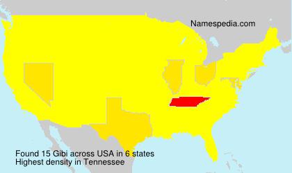 Familiennamen Gibi - USA