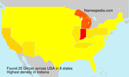 Surname Ginzer in USA