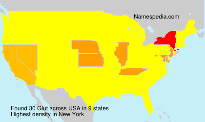 Surname Glut in USA