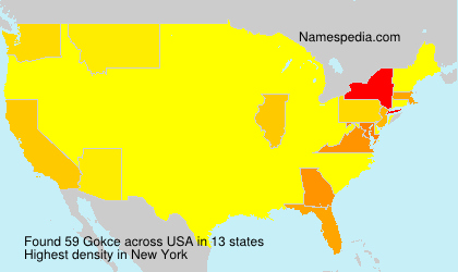Surname Gokce in USA