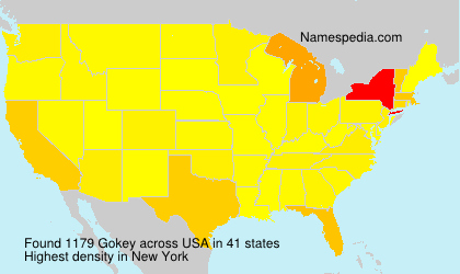 Surname Gokey in USA