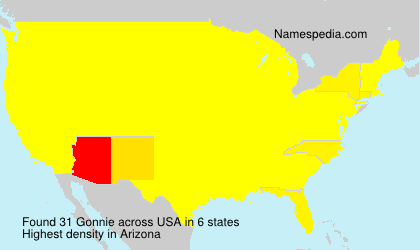 Surname Gonnie in USA