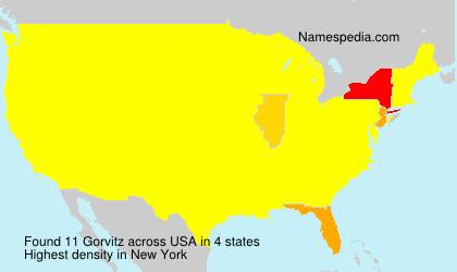 Surname Gorvitz in USA
