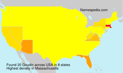 Surname Goudin in USA
