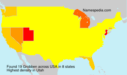 Surname Grobben in USA