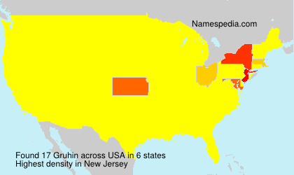 Surname Gruhin in USA