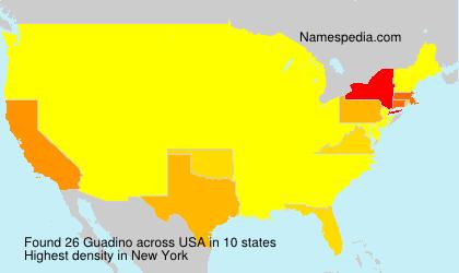 Surname Guadino in USA