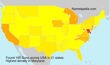 Surname Guns in USA