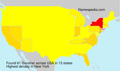 Surname Gunsher in USA