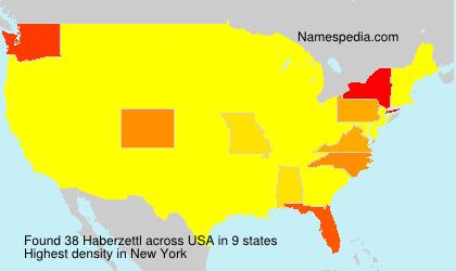 Surname Haberzettl in USA