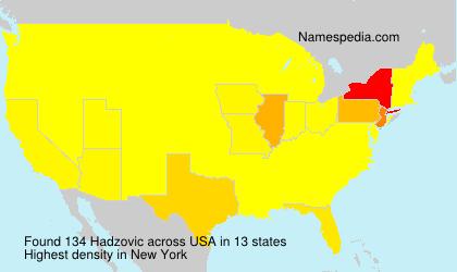 Familiennamen Hadzovic - USA