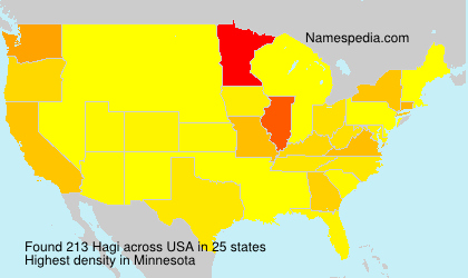 Surname Hagi in USA