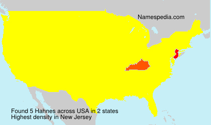Surname Hahnes in USA