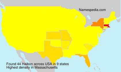 Familiennamen Haibon - USA