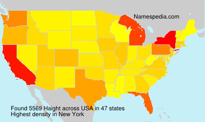 Surname Haight in USA