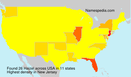 Surname Haizel in USA